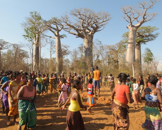 Sacrifice at sacred baobab